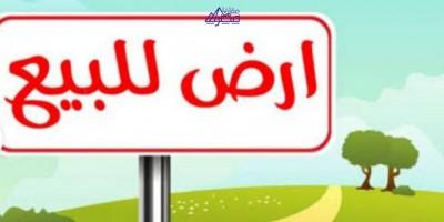 أراضي سكنية 800م للبيع كاش بالقاهرة الجديدة القاهرة