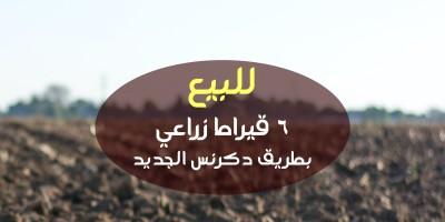 أراضي زراعية 1050م للبيع كاش بمركز دكرنس الدقهلية