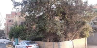 فيلا سكنية 340م للبيع كاش بمركز منيا القمح الشرقية