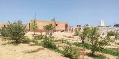 أراضي تجارية 1750م للبيع كاش بمركز ابو صوير الإسماعيلية