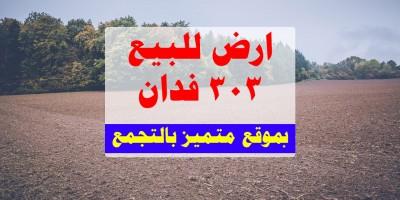 أراضي أخرى 303م للبيع كاش بالقاهرة الجديدة القاهرة
