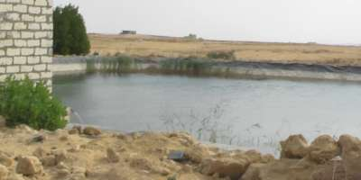 أراضي زراعية 420000م للبيع بالتقسيط ب6 اكتوبر القاهرة