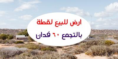 أراضي أخرى 60م للبيع كاش ب15 مايو القاهرة